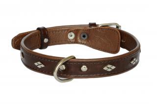 Ошейник Mister GaFF Premium 25 мм/50 см коричневый с украшением Замочек